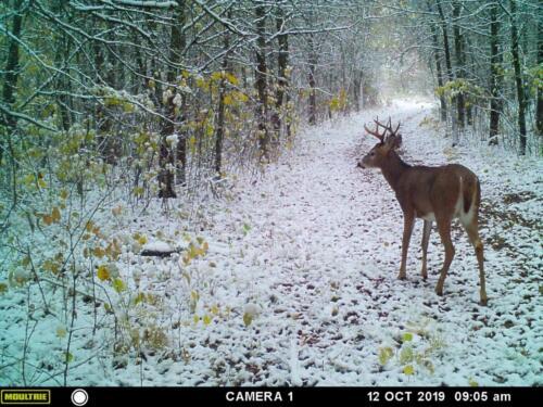 Jeremy Houtari_Wadena County